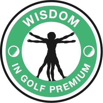 Online Golf Course Lessons Academy